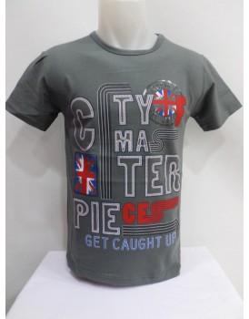 Gri Renk Baskılı Erkek T-shirt